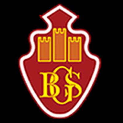 Brimsham-Green-School